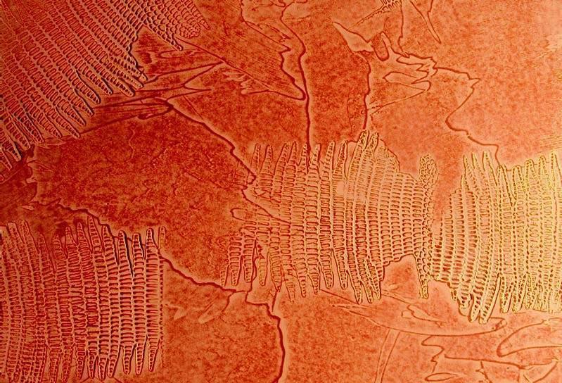 Kama - rettile arancio